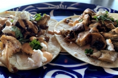 mushroom-taco-2