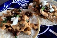 mushroom-taco-3